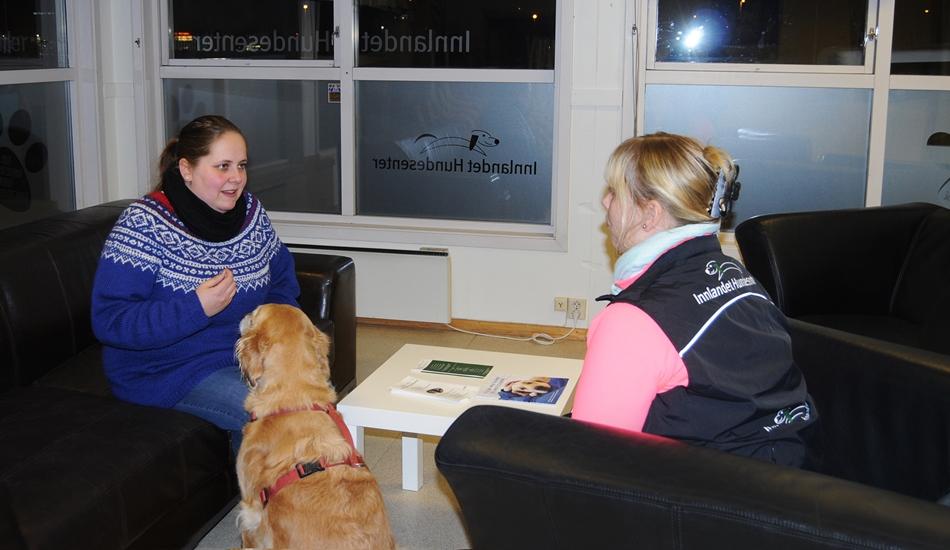 Opplever du små eller store problemer med hunden din, som du ikke riktig vet hvordan du skal håndtere, kan jeg hjelpe deg med dette på en konsultasjon. En konsultasjon vil kunne hjelpe deg å finne årsaken til hvorfor problemene har oppstått og hvordan du bør trene for å eliminere eller minske problematferden. For å ha utbytte av en konsultasjon, må […]